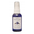 South Bark's Blueberry Clove Pet Cologne - 2.5oz